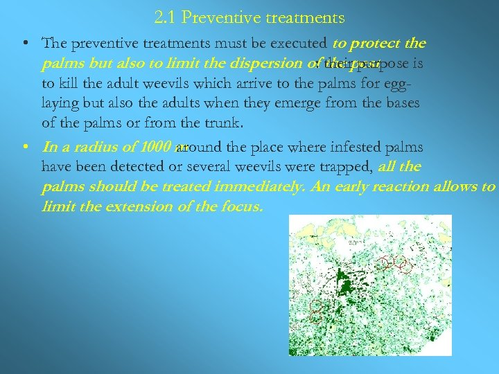 2. 1 Preventive treatments • The preventive treatments must be executed to protect the