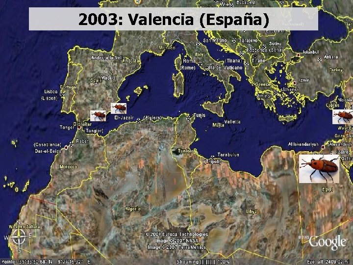 2003: Valencia (España)