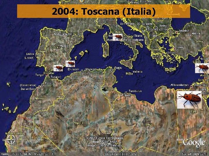 2004: Toscana (Italia)
