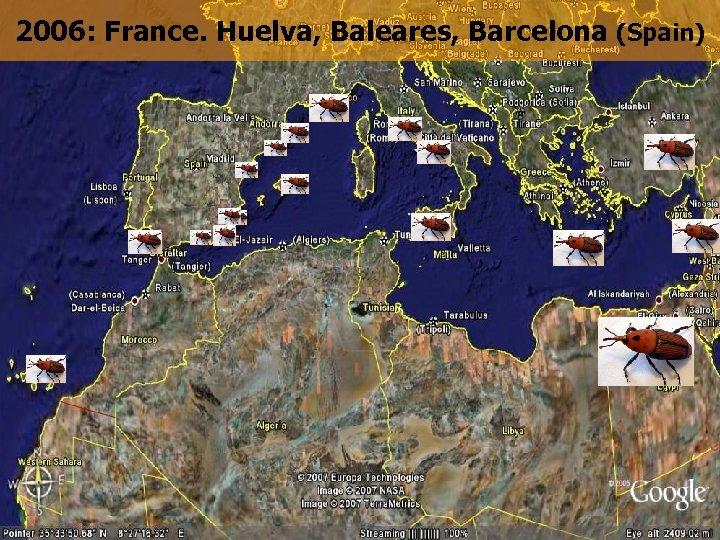 2006: France. Huelva, Baleares, Barcelona (Spain)
