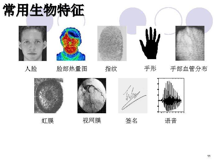 常用生物特征 人脸 脸部热量图 虹膜 视网膜 手形 指纹 签名 手部血管分布 语音 11