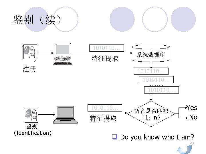 鉴别(续) 1010110… 特征提取 注册 系统数据库 1010110… …… 1010110… 特征提取 鉴别 (Identification) 两者是否匹配 (1:n) Yes