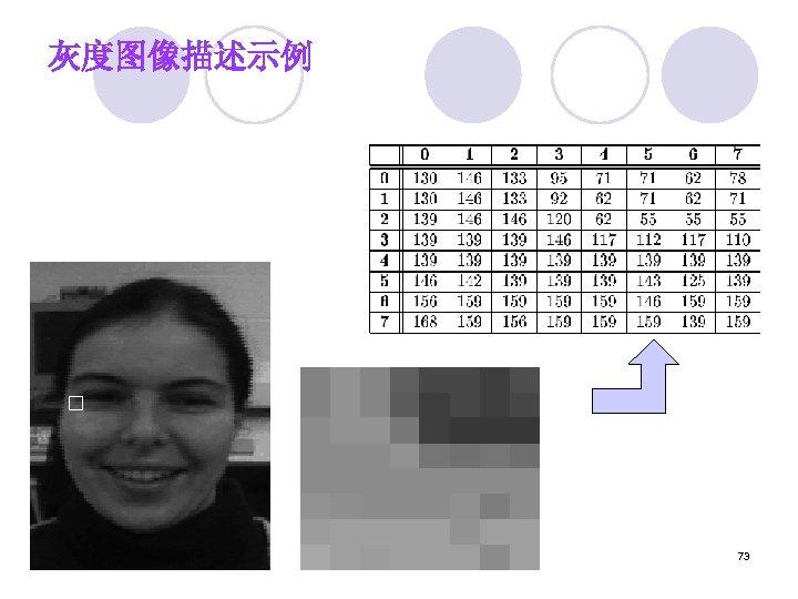 灰度图像描述示例 73