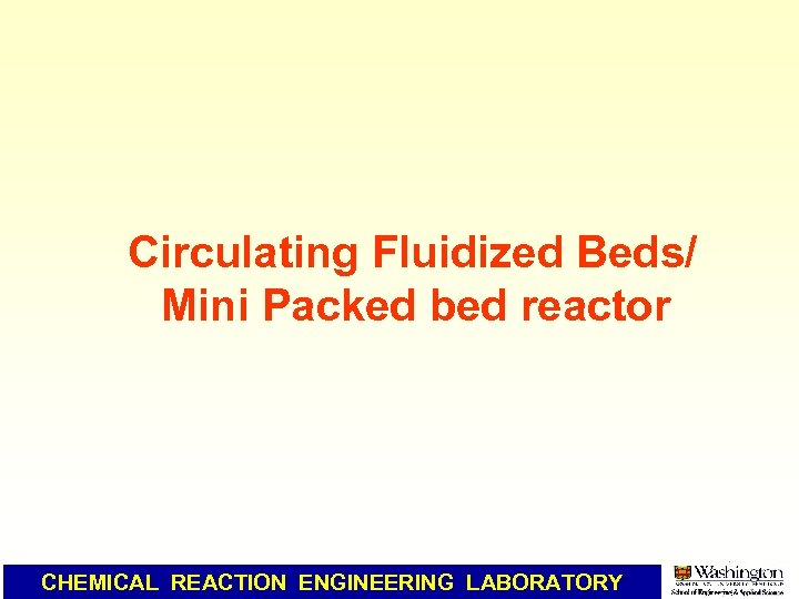 Circulating Fluidized Beds/ Mini Packed bed reactor CHEMICAL REACTION ENGINEERING LABORATORY