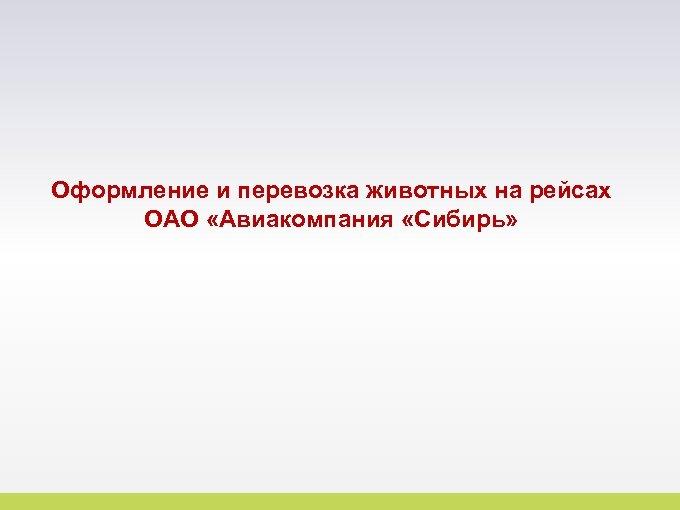 Оформление и перевозка животных на рейсах ОАО «Авиакомпания «Сибирь» 17
