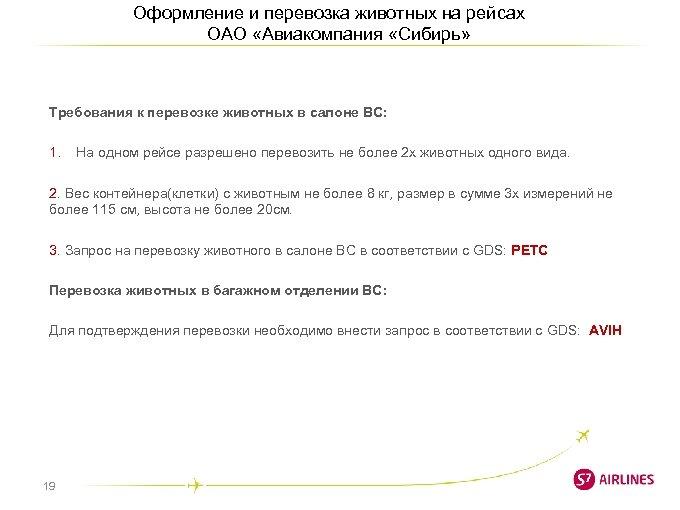 Оформление и перевозка животных на рейсах ОАО «Авиакомпания «Сибирь» Требования к перевозке животных в