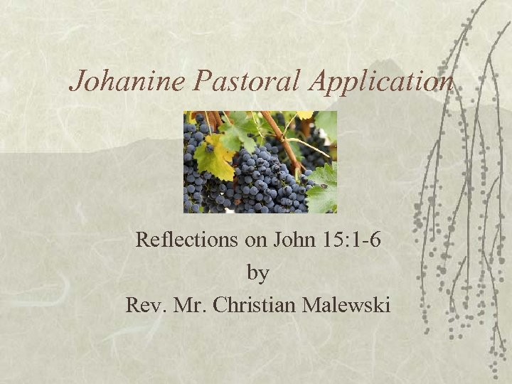Johanine Pastoral Application Reflections on John 15: 1 -6 by Rev. Mr. Christian Malewski
