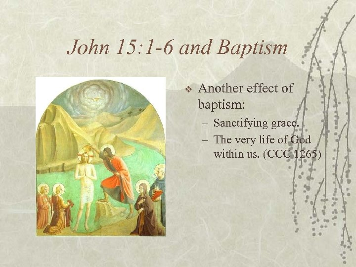 John 15: 1 -6 and Baptism v Another effect of baptism: – Sanctifying grace.