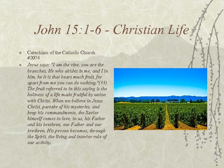 John 15: 1 -6 - Christian Life v v Catechism of the Catholic Church
