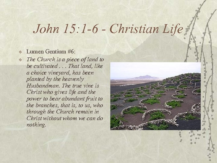 John 15: 1 -6 - Christian Life v v Lumen Gentium #6: The Church