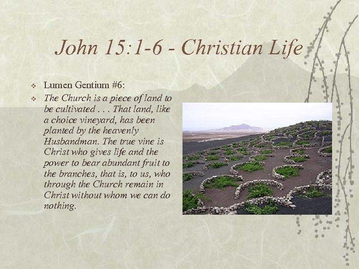 John 15: 1 -6 - Christian Life v v Lumen Gentium #6: The Church