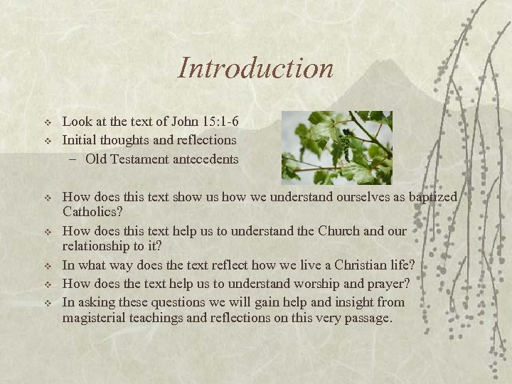 Introduction v v v v Look at the text of John 15: 1 -6