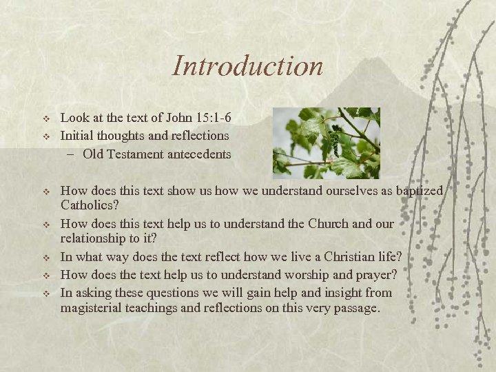 Introduction v v v v Look at the text of John 15: 1 -6
