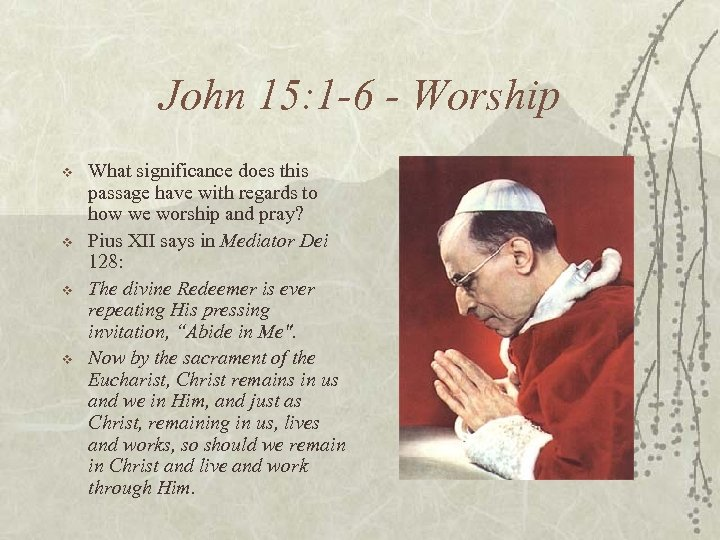 John 15: 1 -6 - Worship v v What significance does this passage have