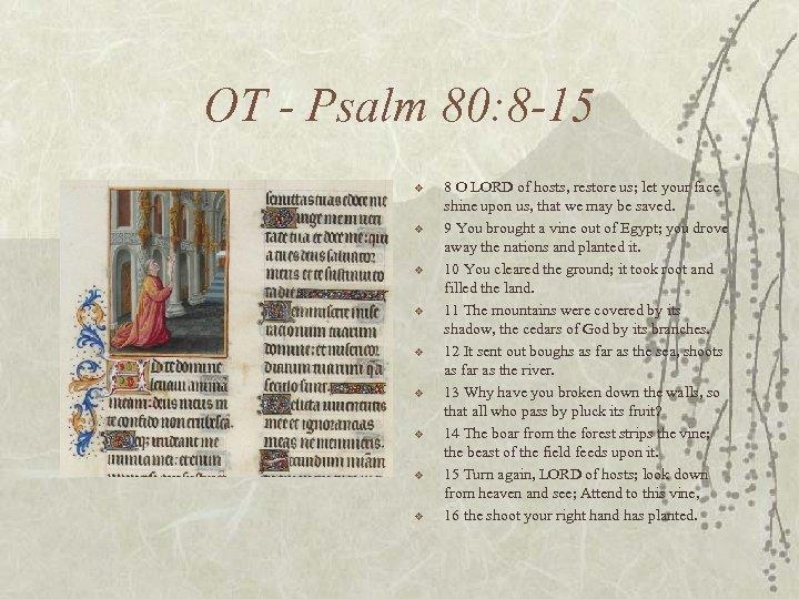 OT - Psalm 80: 8 -15 v v v v v 8 O LORD