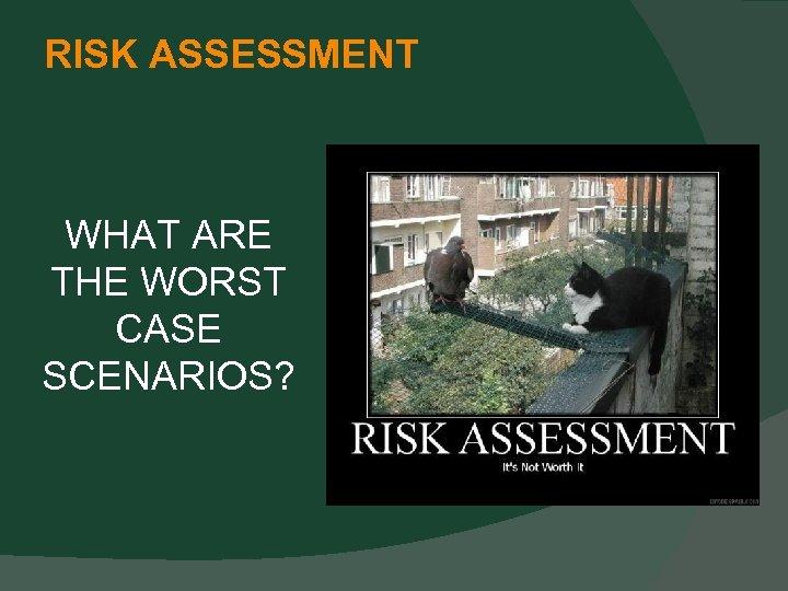 RISK ASSESSMENT WHAT ARE THE WORST CASE SCENARIOS?