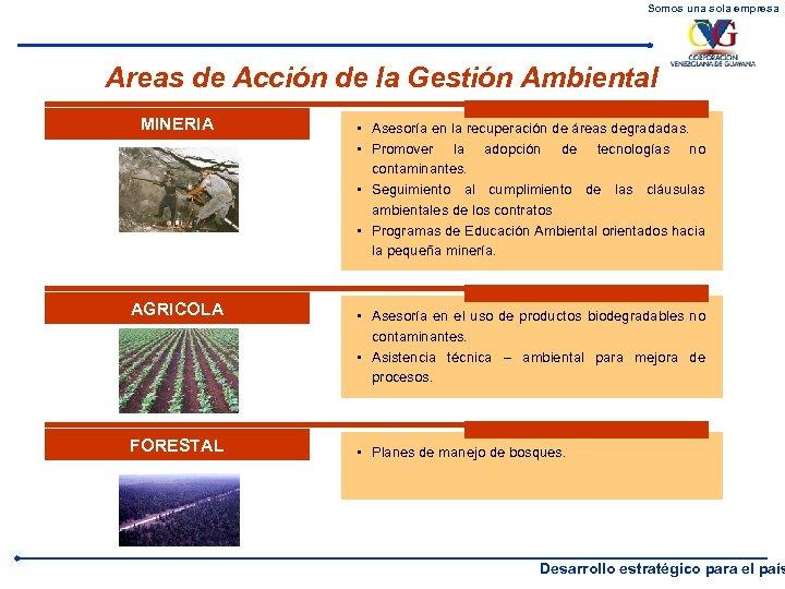 Somos una sola empresa Areas de Acción de la Gestión Ambiental MINERIA AGRICOLA FORESTAL