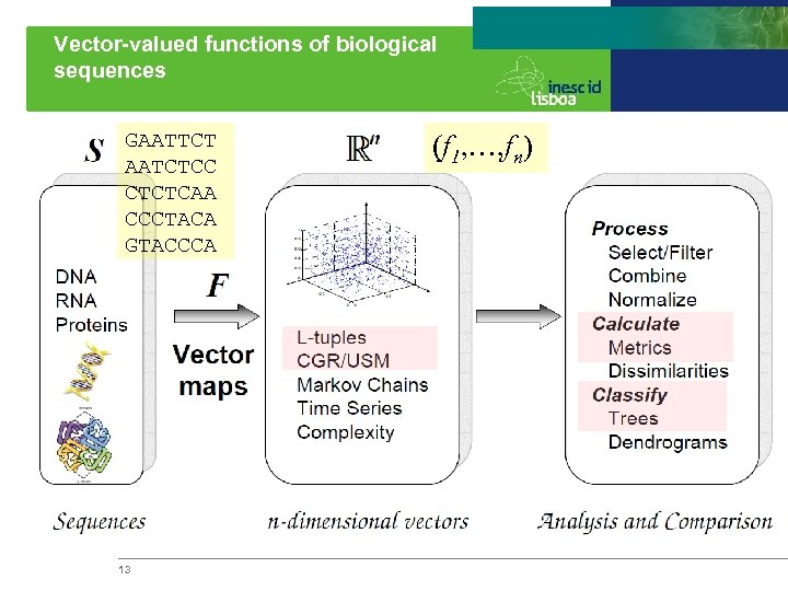 Vector-valued functions of biological sequences GAATTCT AATCTCC CTCTCAA CCCTACA GTACCCA 13 (f 1, …,