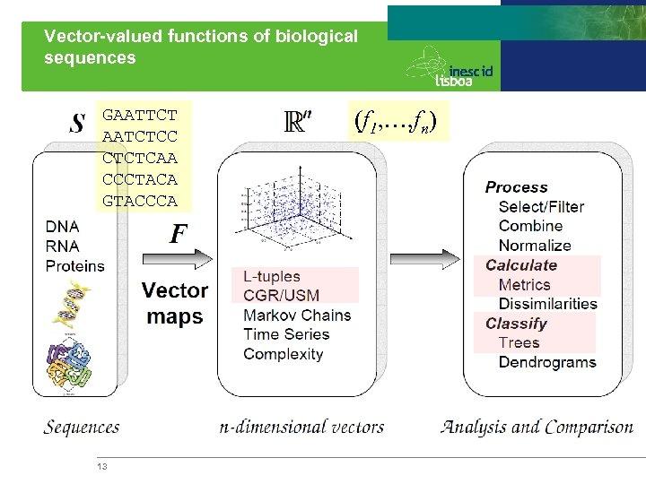 Vector-valued functions of biological sequences GAATTCT AATCTCC CTCTCAA CCCTACA GTACCCA 13 (f 1, …,