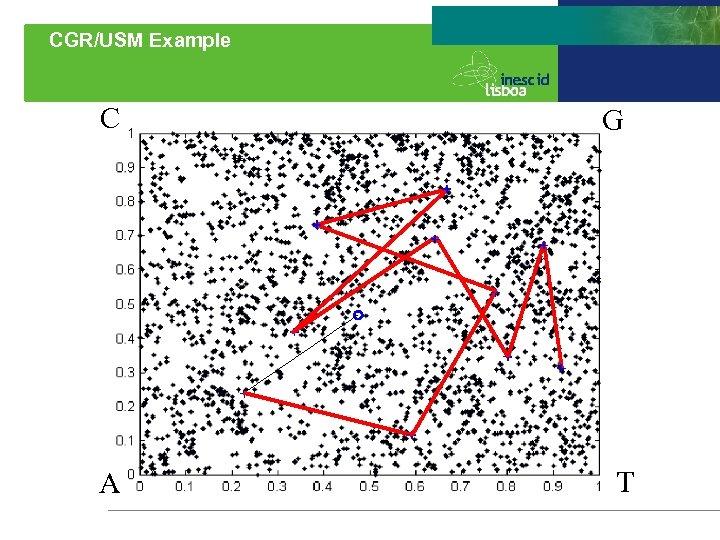 CGR/USM Example C A G T
