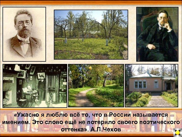 «Ужасно я люблю всё то, что в России называется имением. Это слово ещё