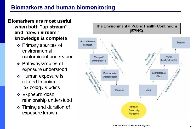 """Biomarkers and human biomonitoring Biomarkers are most useful when both """"up stream"""" and """"down"""