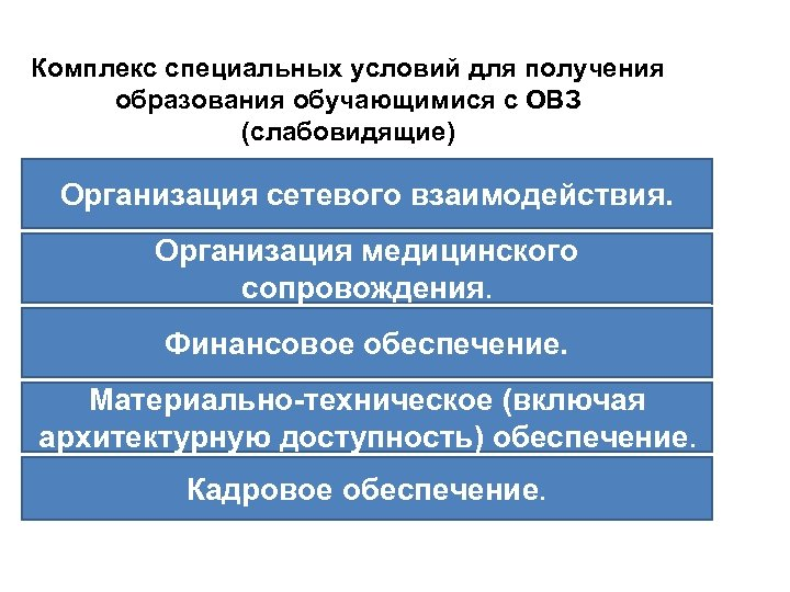 Комплекс специальных условий для получения образования обучающимися с ОВЗ (слабовидящие) Организация сетевого взаимодействия. Организация