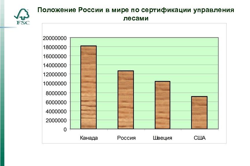 Положение России в мире по сертификации управления лесами