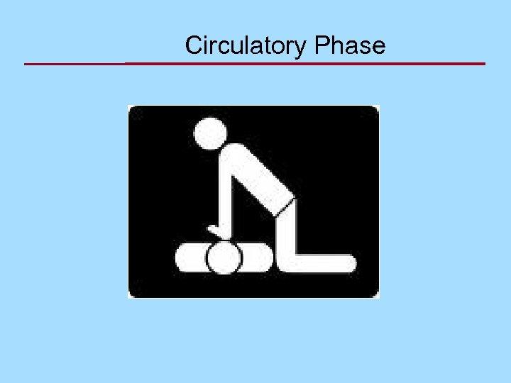 Circulatory Phase