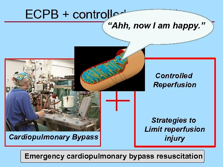 """ECPB + controlled reperfusion """"Ahh, now I am happy. """" Controlled Reperfusion Cardiopulmonary Bypass"""