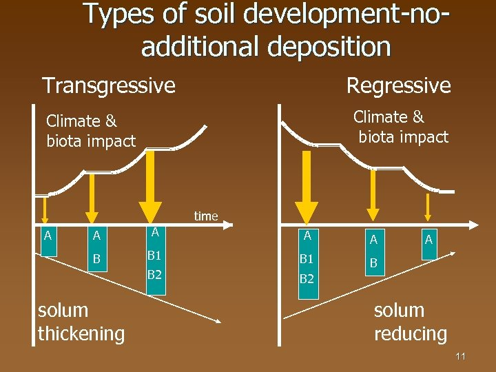 Types of soil development-noadditional deposition Transgressive Regressive Climate & biota impact time A A