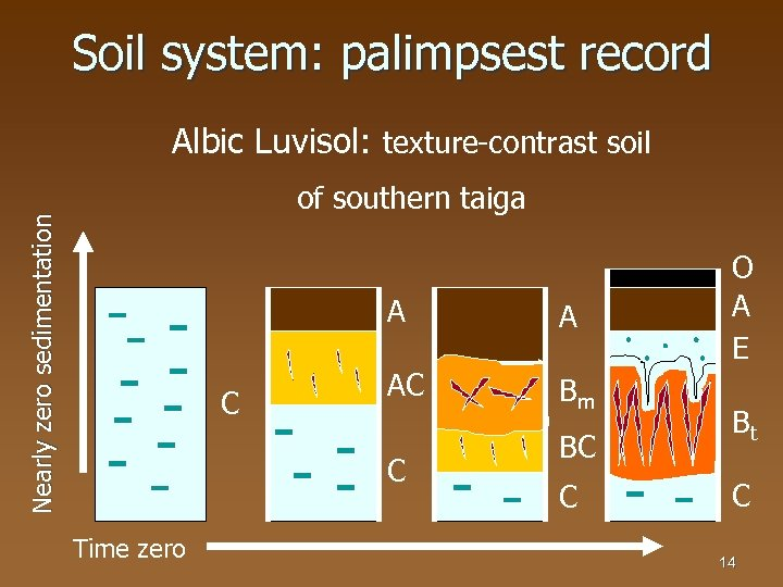Soil system: palimpsest record Albic Luvisol: texture-contrast soil Nearly zero sedimentation of southern taiga