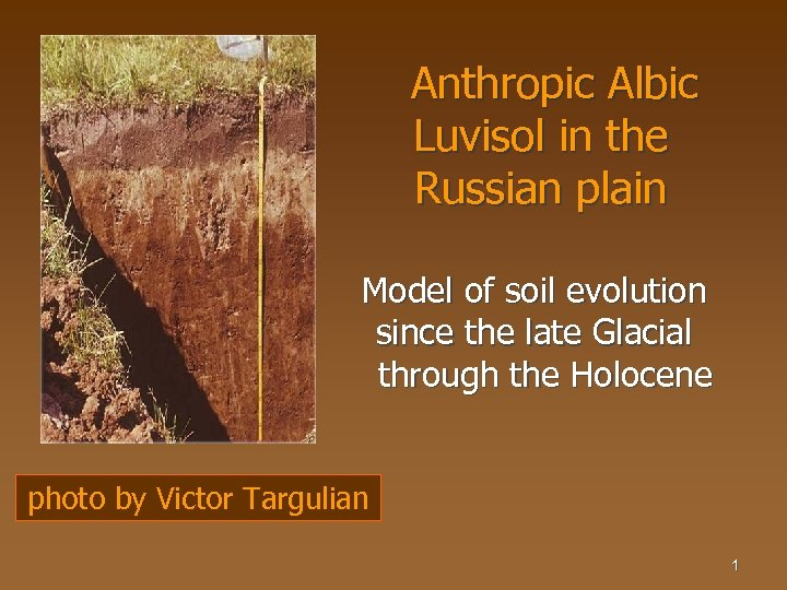 Anthropic Albic Luvisol in the Russian plain Model of soil evolution since the late