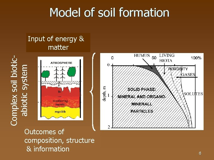 Model of soil formation Complex soil bioticabiotic system Input of energy & matter Outcomes