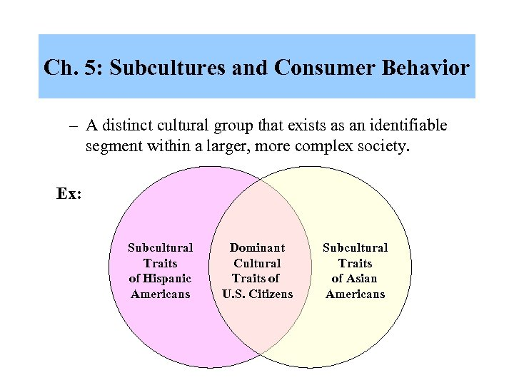 Ch. 5: Subcultures and Consumer Behavior – A distinct cultural group that exists as