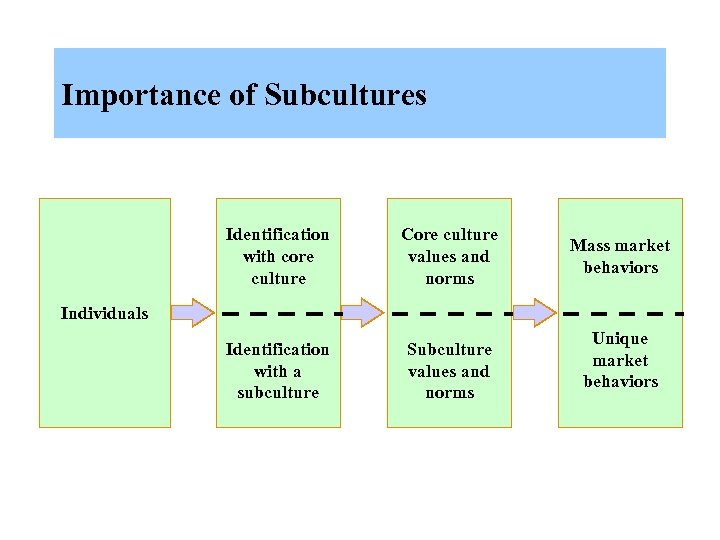 Importance of Subcultures Identification with core culture Core culture values and norms Identification with