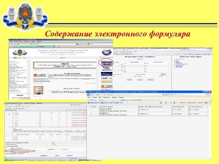 Содержание электронного формуляра