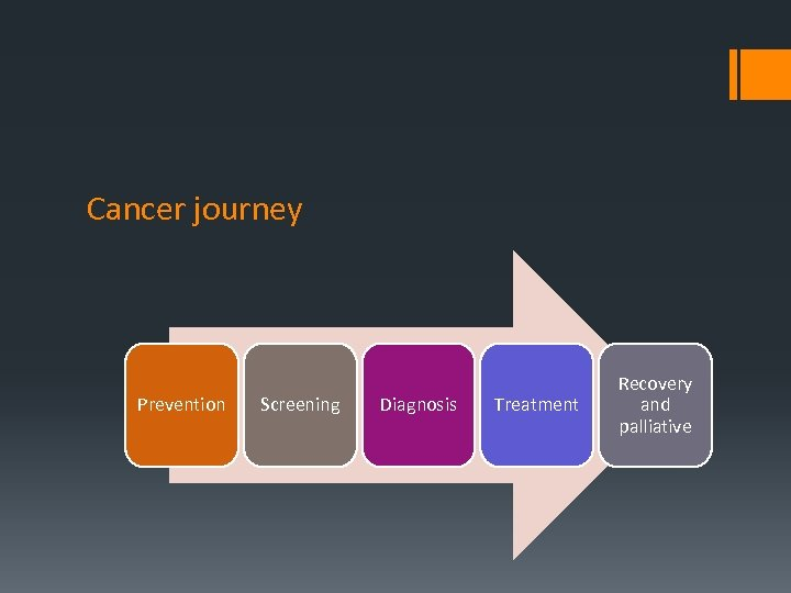 Cancer journey Prevention Screening Diagnosis Treatment Recovery and palliative