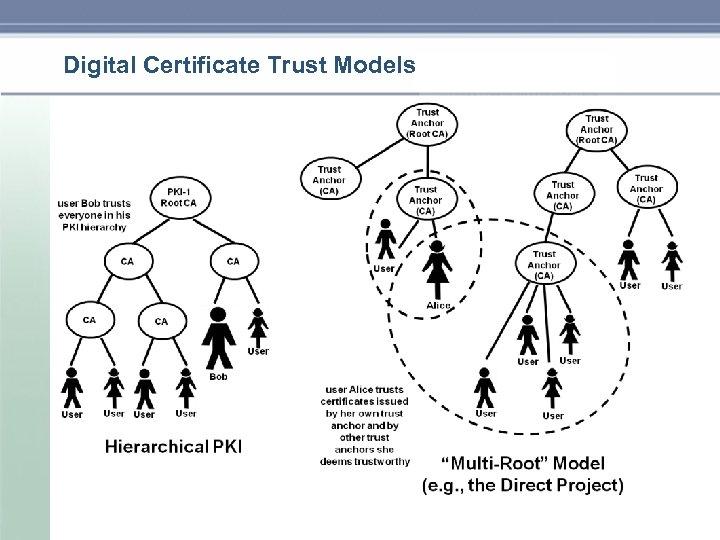 Digital Certificate Trust Models