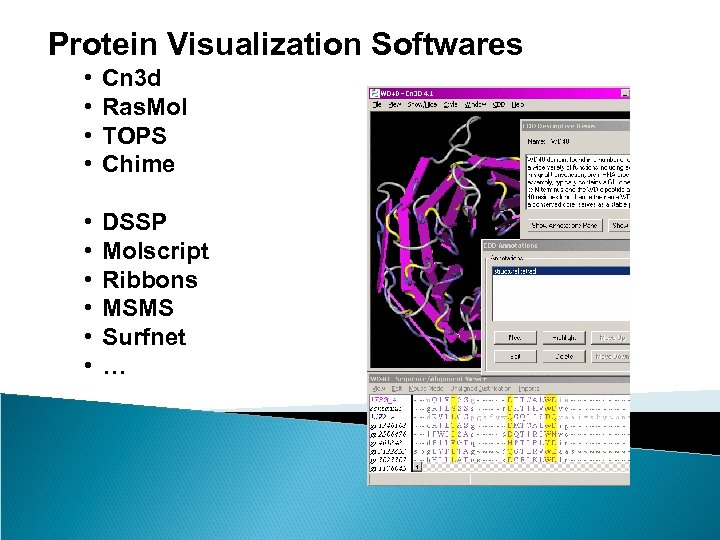 Protein Visualization Softwares • • Cn 3 d Ras. Mol TOPS Chime • •