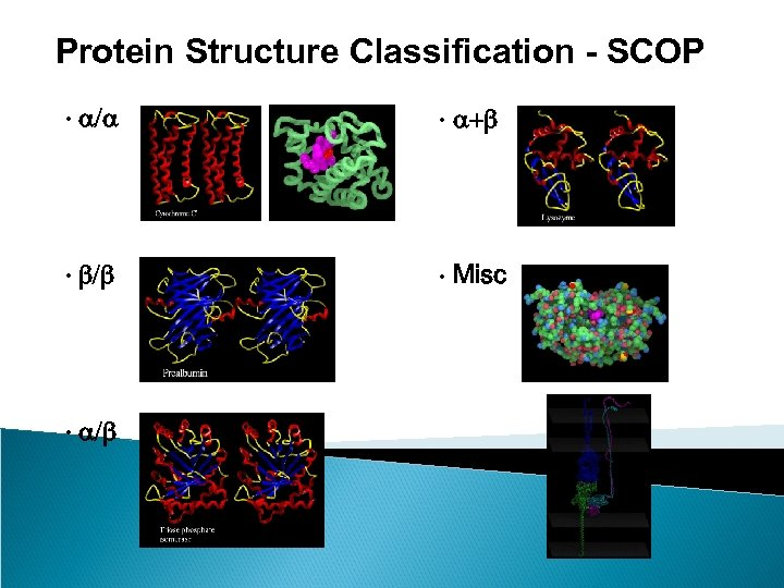 Protein Structure Classification - SCOP • a/a • a+b • b/b • Misc •