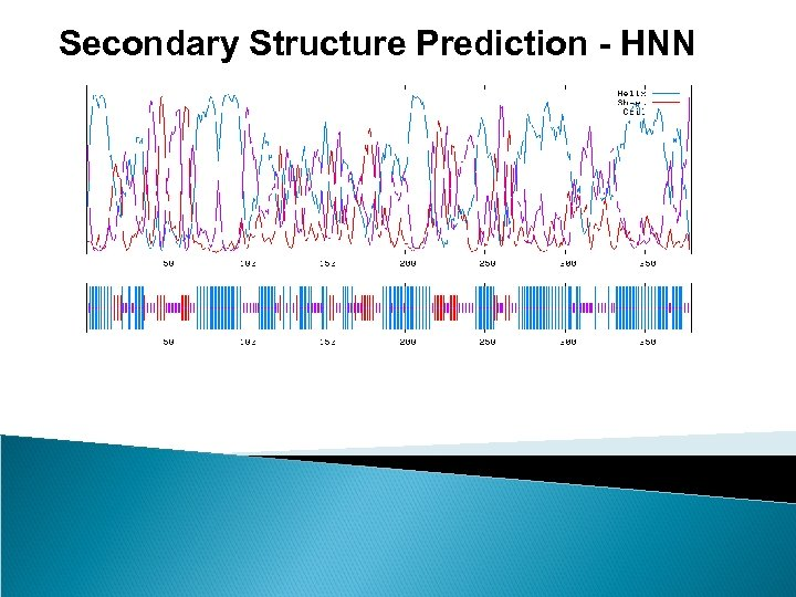 Secondary Structure Prediction - HNN