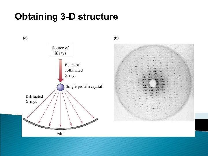 Obtaining 3 -D structure