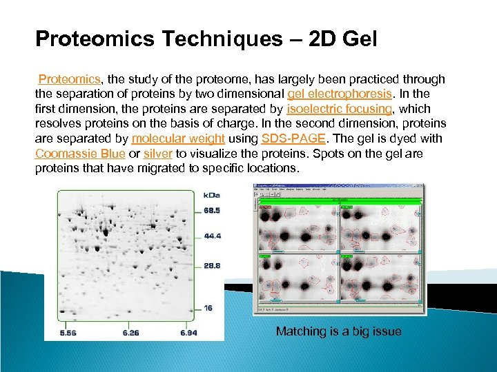 Proteomics Techniques – 2 D Gel Proteomics, the study of the proteome, has largely