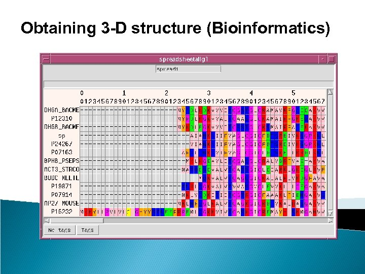 Obtaining 3 -D structure (Bioinformatics)