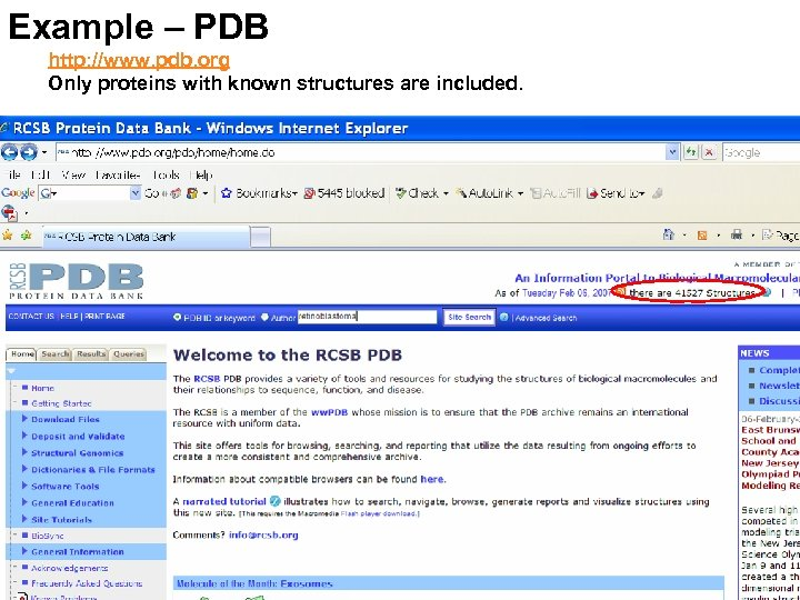 Example – PDB http: //www. pdb. org Only proteins with known structures are included.