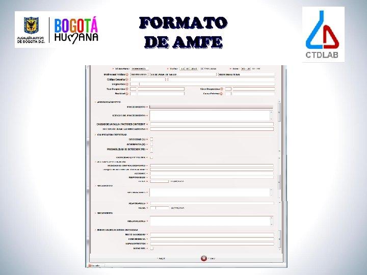 FORMATO DE AMFE