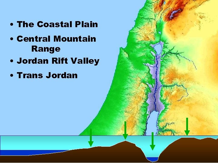 • The Coastal Plain • Central Mountain Range • Jordan Rift Valley •