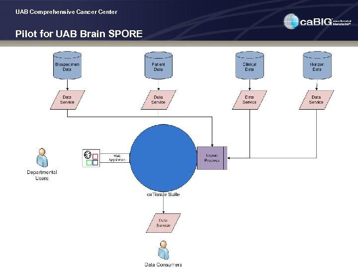 UAB Comprehensive Cancer Center Pilot for UAB Brain SPORE