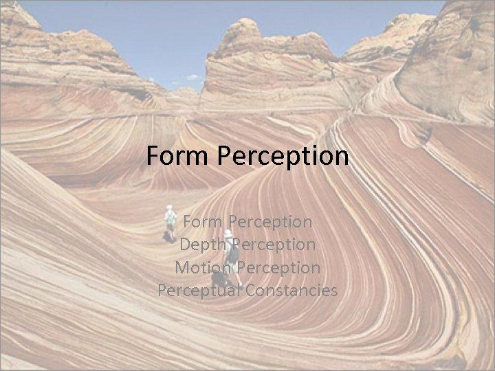 Form Perception Depth Perception Motion Perceptual Constancies